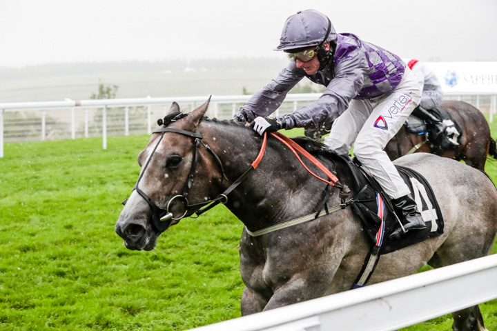Can Havana Grey buck three-year-old trend for Burke