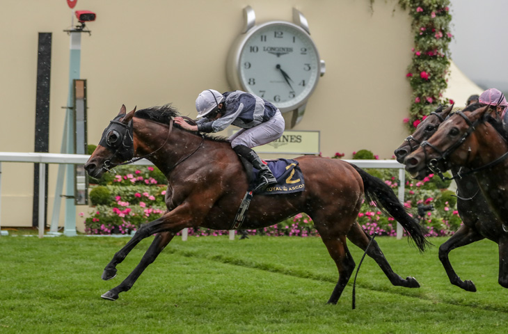 Circus Maximus proves king of Ascot > Australia and