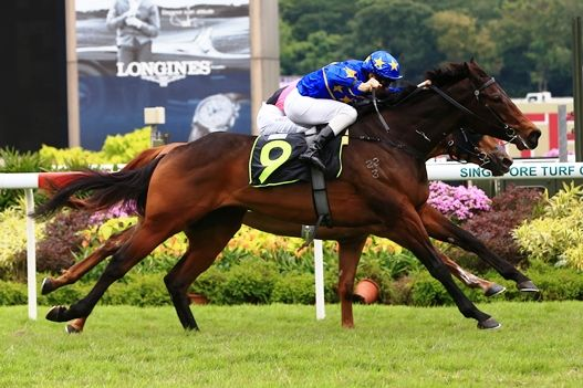 Regal tussle as Lim's Royal downs Red Duke > Australia and