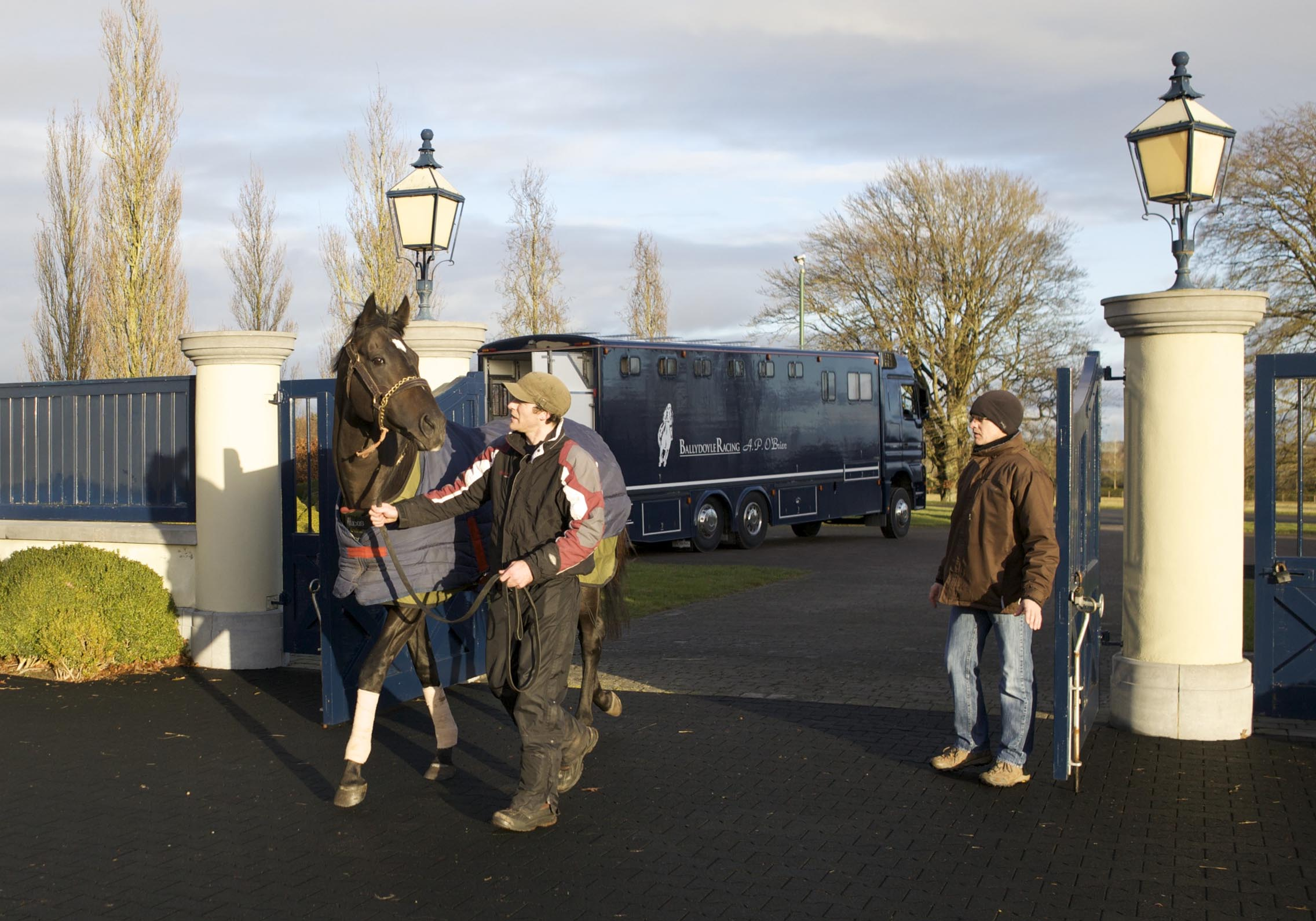 So You Think Arrives At Ballydoyle Gt Australia And
