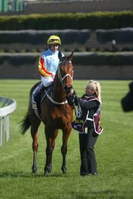 Sunline Nz A Tribute To A Racehorse Of A Lifetime